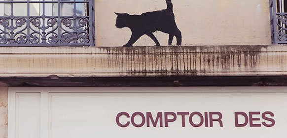 #ComptoirStories