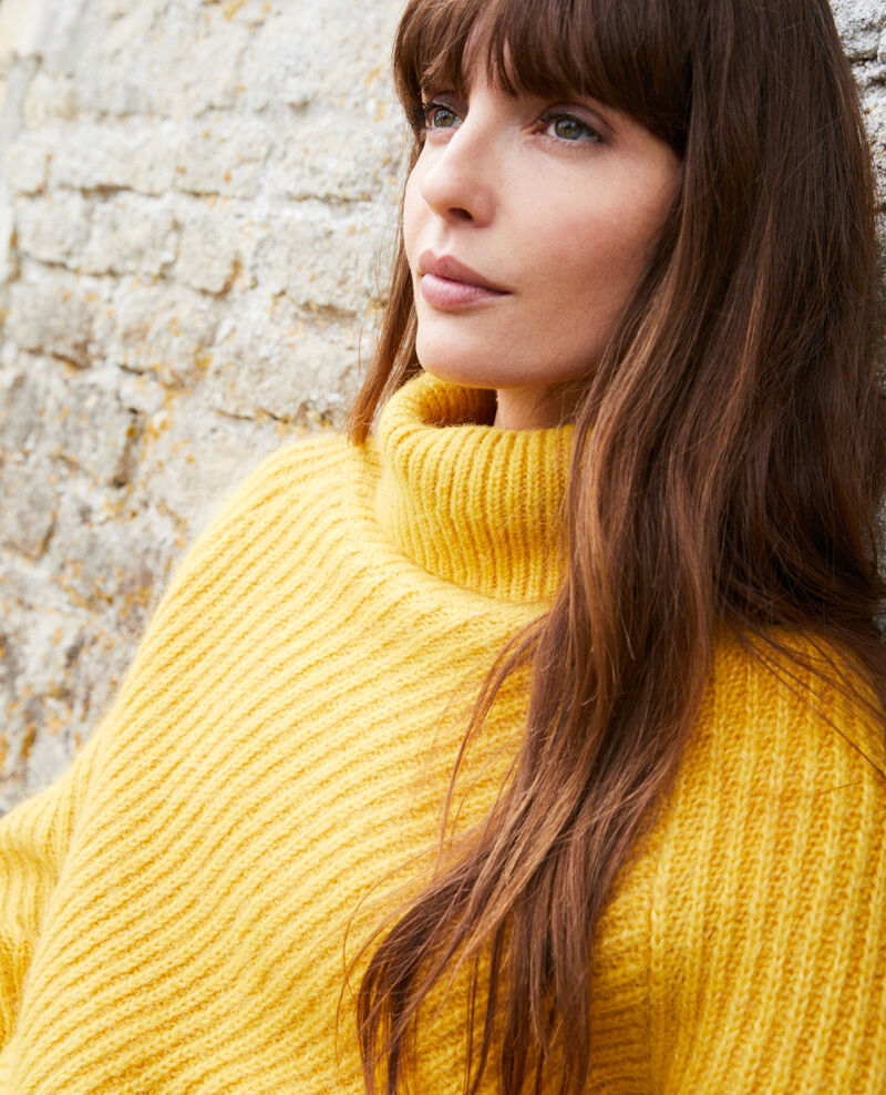 Roll neck jumper Spicy mustard Joomia