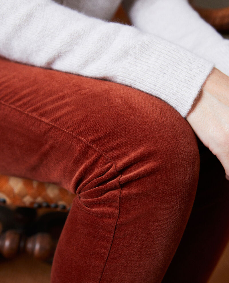 Smooth velvet trousers Brandy brown Juillemin